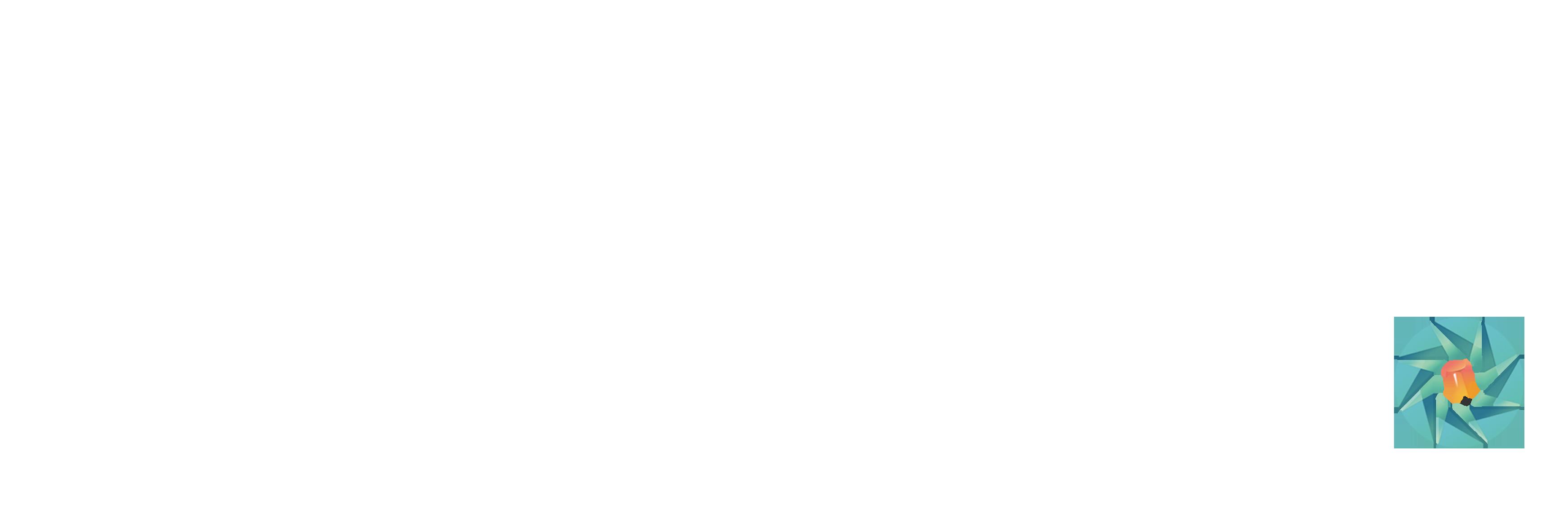 Pinmo